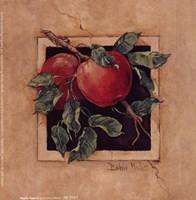 Apple Square Fine Art Print