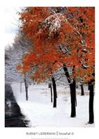 SnowFall III Framed Print