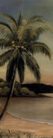 Palm at Seaside Fine Art Print