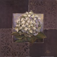 Hydrangeas on Brown II Fine Art Print