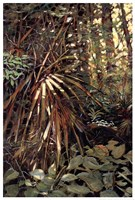 My Jungle I Fine Art Print