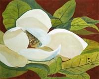 Magnolia I Framed Print