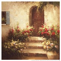 Rustic Doorway I Framed Print