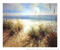 Across the Dunes Fine Art Print