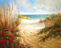 Seaside Pathway Fine Art Print