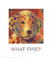 What Fire? Fine Art Print