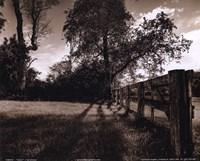 Fence I Framed Print