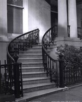 Savannah Stairs I Fine Art Print
