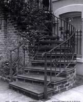Savannah Stairs III Framed Print
