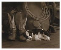 Cowboy Puppy Fine Art Print