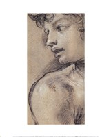 Head of a Young Man Fine Art Print