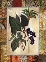 Garden Tropicalismo II Fine Art Print