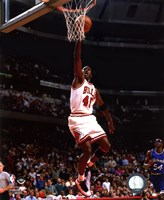 Michael Jordan 1994-95 shooting Fine Art Print