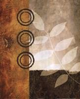 November Textures II Framed Print