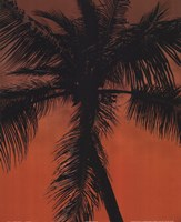 Palm on Orange Framed Print