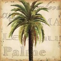 La Palma III Framed Print