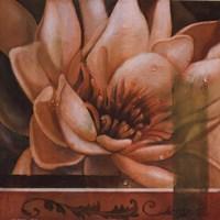 Flor de Loto II Fine Art Print