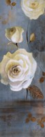 Late Summer Roses Fine Art Print