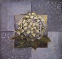 Hydrangeas on Blue I Fine Art Print