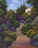 Garden Path II Framed Print