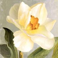 Daffodil Sky I Fine Art Print