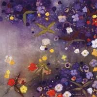 Gardnes in the Mist X Fine Art Print
