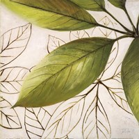 Fresh Leaves I Fine Art Print