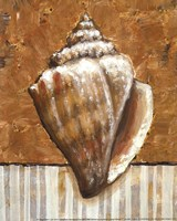 Vintage Shell II - mini Fine Art Print