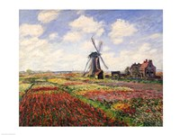 Tulip Fields with the Rijnsburg Windmill, 1886 Framed Print