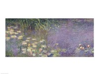 Waterlilies: Morning, 1914-18 (left section) Fine Art Print
