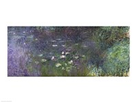 Waterlilies: Morning, 1914-18 (right section) Fine Art Print