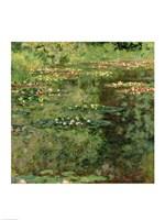 The Waterlily Pond, 1904 Fine Art Print