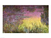 Waterlilies at Sunset, 1915-26 (detail of left side) Fine Art Print