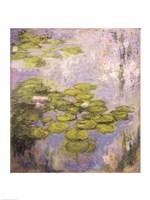 Nympheas, 1916-19 Fine Art Print