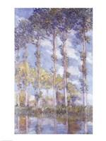 The Poplars, 1881 Fine Art Print