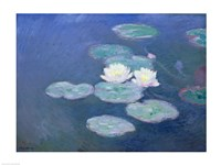 Waterlilies, Evening Fine Art Print