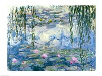 Waterlilies, 1916-19 Framed Print