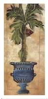 Potted Palm III Fine Art Print
