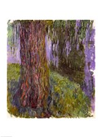 Weeping Willow and the Waterlily Pond Fine Art Print