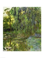 Weeping Willows, The Waterlily Pond at Giverny, c.1918 Framed Print