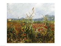 Corn Fields and Poppies, 1888 Fine Art Print
