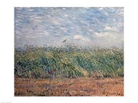 Wheatfield with Lark, 1887 Fine Art Print