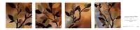 Sundown Bronze Petites Fine Art Print
