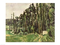 The Poplars Fine Art Print