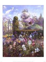 Iris in the Formal Garden Fine Art Print