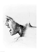 Study for the head of a soldier in 'The Battle of Anghiari' Fine Art Print