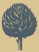 Artichoke 1 Fine Art Print