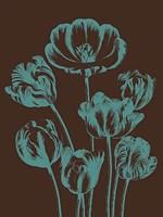 Tulip 6 Fine Art Print