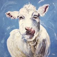 Cow #300 Fine Art Print