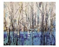 Somewhere in the Mist Framed Print